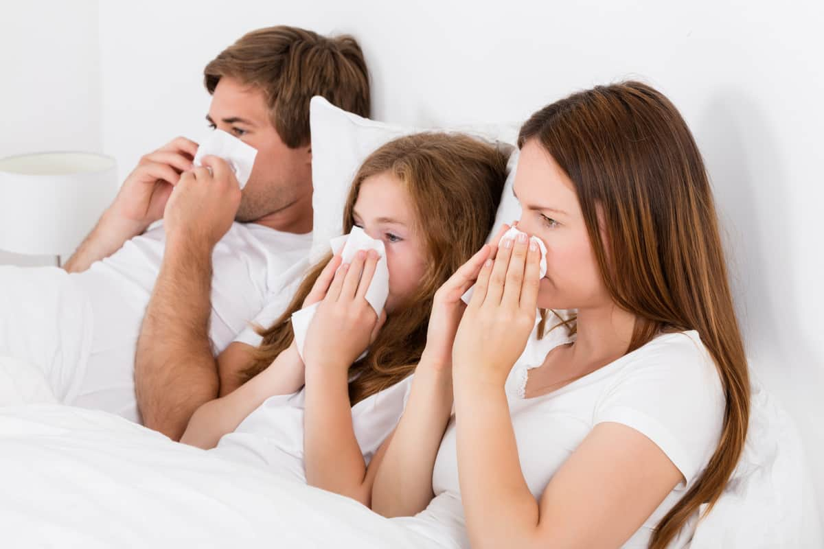 Is school making my family sick?
